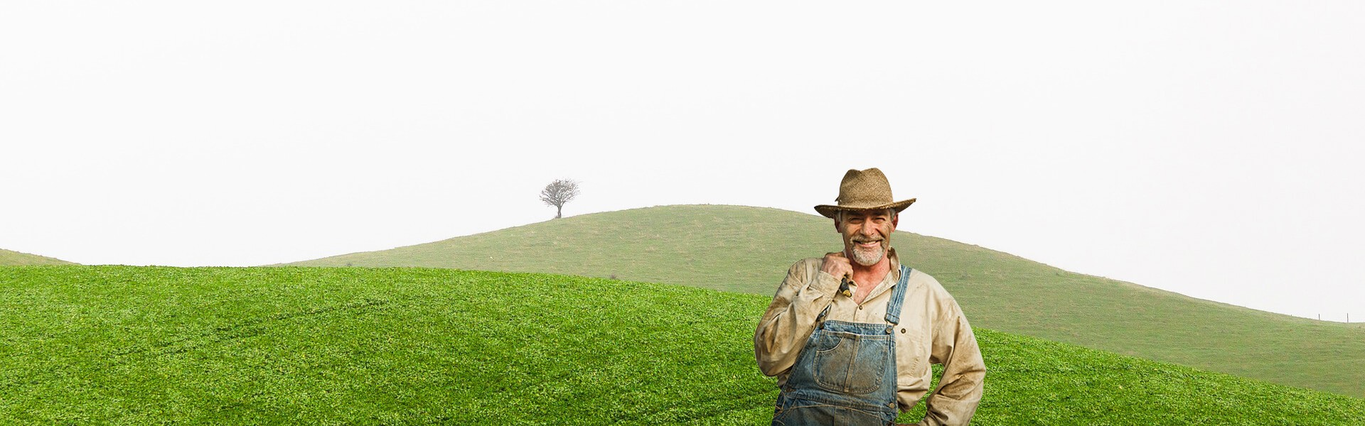 Organic Farm Home